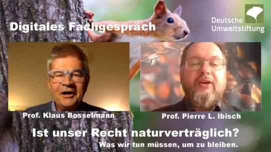 """Fachgespräch der Deutschen Umweltstiftung: """"Ist unser Recht naturverträglich"""""""